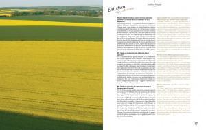 livredor2011_Page-11