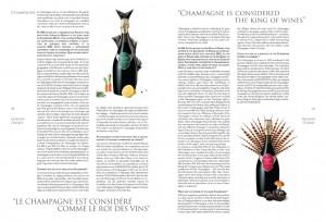 livredor2010_Page_16