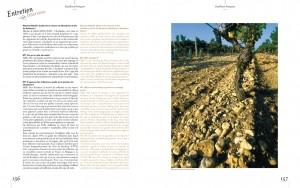 livredor2011_Page_01