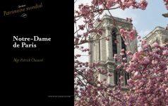 excellence-francaise-2019-notre-dame-de-paris-01