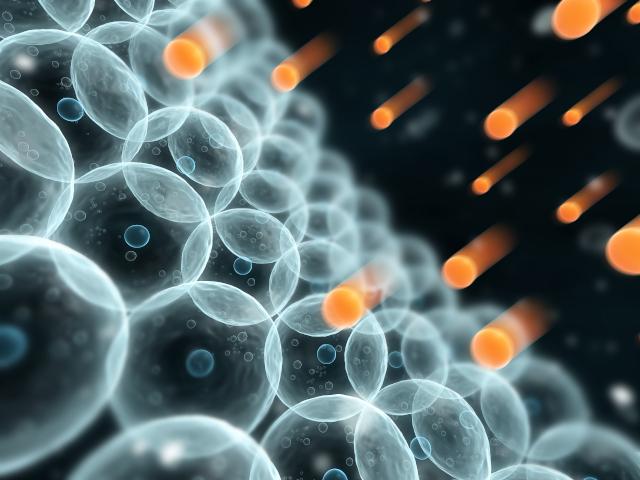 laureat-2020-biologie-industrielle.jpg